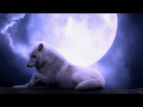 BRUNUHVILLE - The Wolf And The Moon (HQ Visualised Sound, 4K-Ultra-HD)